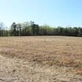 4803 Andrew Jackson Highway - Photo 21
