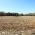 4803 Andrew Jackson Highway - Photo 22