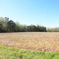 4803 Andrew Jackson Highway - Photo 24