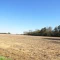 4803 Andrew Jackson Highway - Photo 27