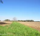 4803 Andrew Jackson Highway - Photo 29