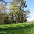 4803 Andrew Jackson Highway - Photo 30
