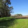 4803 Andrew Jackson Highway - Photo 31