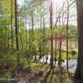 4803 Andrew Jackson Highway - Photo 36