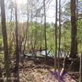 4803 Andrew Jackson Highway - Photo 40