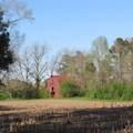 4803 Andrew Jackson Highway - Photo 44