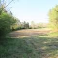 4803 Andrew Jackson Highway - Photo 45