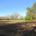4803 Andrew Jackson Highway - Photo 46