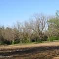 4803 Andrew Jackson Highway - Photo 47