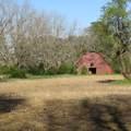 4803 Andrew Jackson Highway - Photo 49