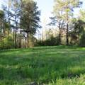 4803 Andrew Jackson Highway - Photo 50