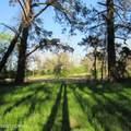 4803 Andrew Jackson Highway - Photo 52