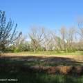 4803 Andrew Jackson Highway - Photo 59