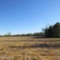 4803 Andrew Jackson Highway - Photo 60