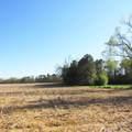 4803 Andrew Jackson Highway - Photo 61