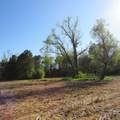 4803 Andrew Jackson Highway - Photo 62