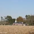 4803 Andrew Jackson Highway - Photo 65