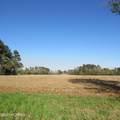 4803 Andrew Jackson Highway - Photo 66