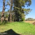 4803 Andrew Jackson Highway - Photo 68
