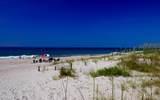 102 Spotted Sandpiper - Photo 45