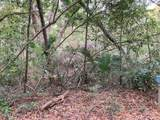 1 Live Oak Trail - Photo 3