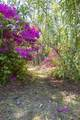 133 Trombay Drive - Photo 85