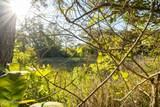 329 Winding Woods Way - Photo 20