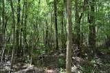 34.87 Acre Nc Hwy 53 - Photo 12