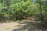 34.87 Acre Nc Hwy 53 - Photo 8