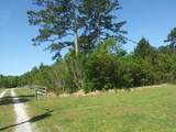 Tract 2 Tom Bland Road - Photo 4