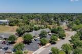 3923 Spicetree Drive - Photo 43