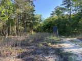 4.65 Acres Cattail Way - Photo 2
