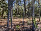 4.65 Acres Cattail Way - Photo 4