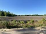 4.65 Acres Cattail Way - Photo 5