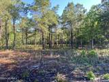 4.65 Acres Cattail Way - Photo 8