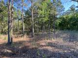 4.65 Acres Cattail Way - Photo 9