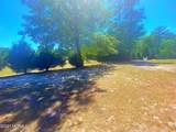 360 Mintz Cemetery Road - Photo 76