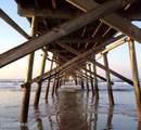 525 Shoreline Drive - Photo 15