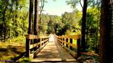 226 Mill Creek Drive - Photo 41
