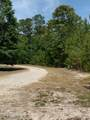 1061 Deer Pant Trail - Photo 4