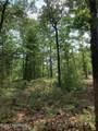 1061 Deer Pant Trail - Photo 5