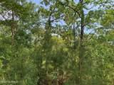 1055 Deer Pant Trail - Photo 3