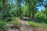 419 Trout Lily Lane - Photo 8
