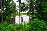 380 Freshwater Drive - Photo 10