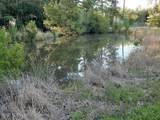 374 Wheat Swamp Road - Photo 43