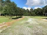 374 Wheat Swamp Road - Photo 47
