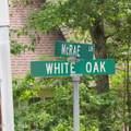 111 White Oak Street - Photo 2