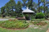 1008 Great Egret Circle - Photo 14