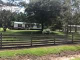 4085 Blue Banks Loop Road - Photo 3