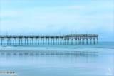 1710 Lake Tree Drive - Photo 34